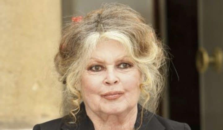 Brigitte Bardot en deuil