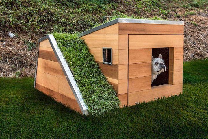Une niche de luxe pour chiens