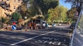 élagueurs abattent arbre tombe sur un cycliste