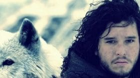 loup-Jon-Snow-Game-Of-thrones-Ghost