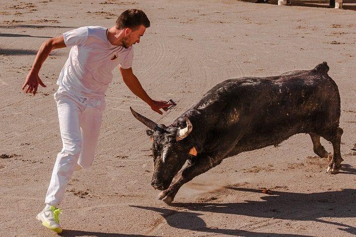 taureau-Gard-spectatrice-percutée-décède