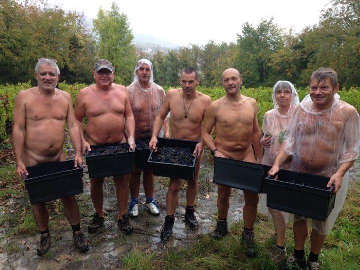 vendanges-nu-Crest-naturistes