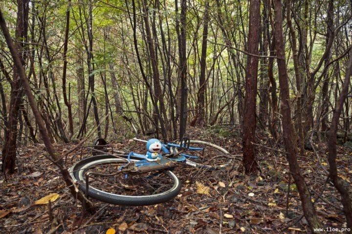 la forêt des suicides, japon