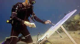 peinture sous-marine fonds marins