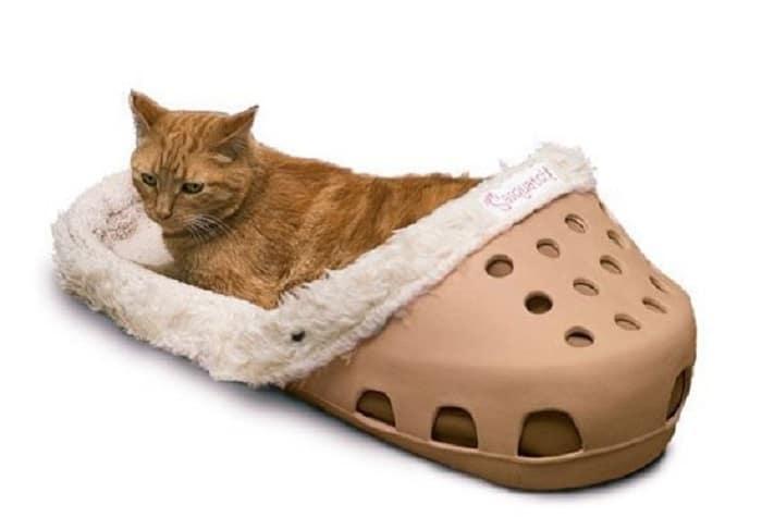 chaussons-géants-chien-chats-lis