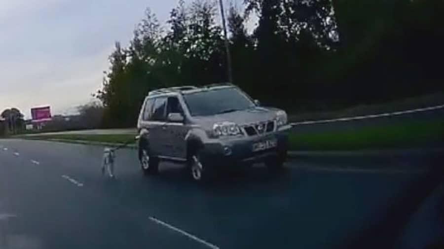 horreur ils prom nent leur chien en laisse attach leur voiture. Black Bedroom Furniture Sets. Home Design Ideas