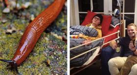 Sam Ballard meurt après avoir mangé une limace
