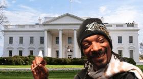 smoke white house