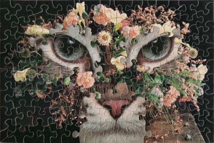 puzzles originaux