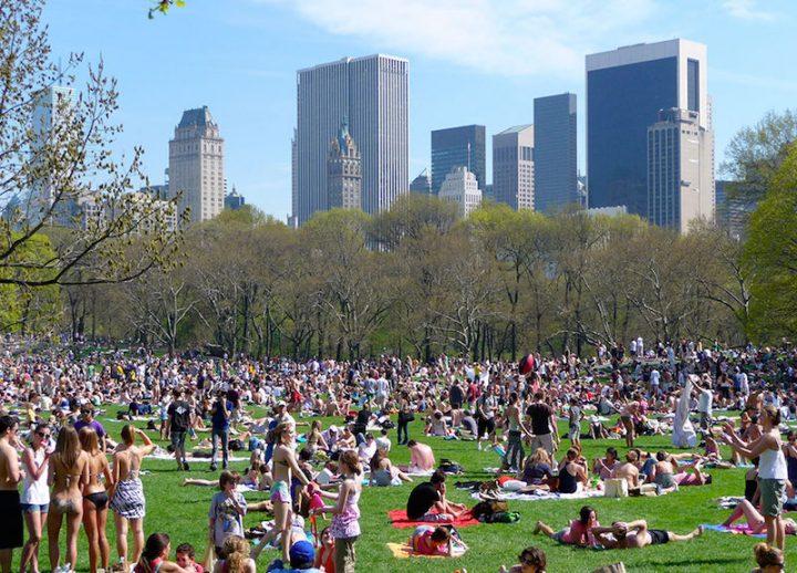 Cental Park réalité