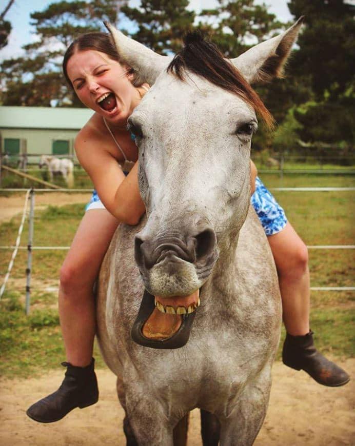 cheval tête bizarre