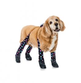 Les leggings pour chiens afin de protéger leurs pattes du froid