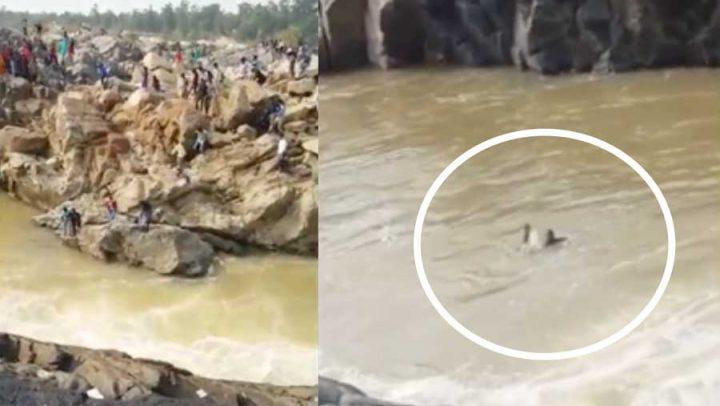 accident de selfie noyade falaises