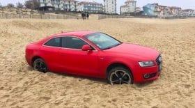 Audi sable