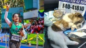 chiot-abandonné-marathon-sauver