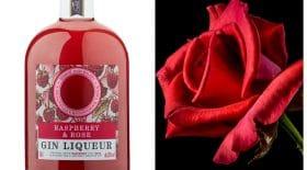 gin rose framboise