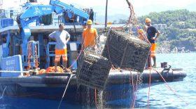 mousseux conservé dans la mer