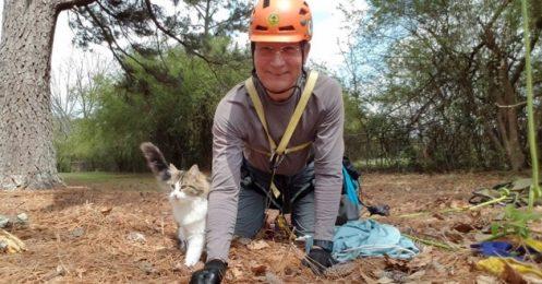 Norman Adams : le sauveteur des chats en détresse