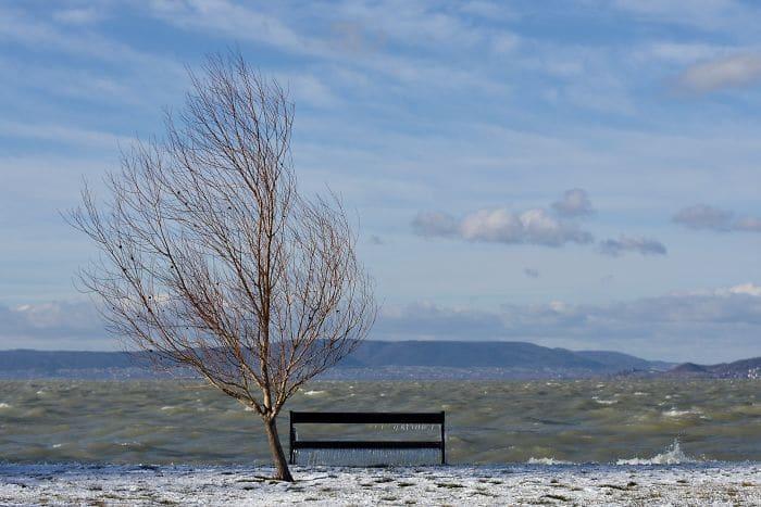plage gelée 13