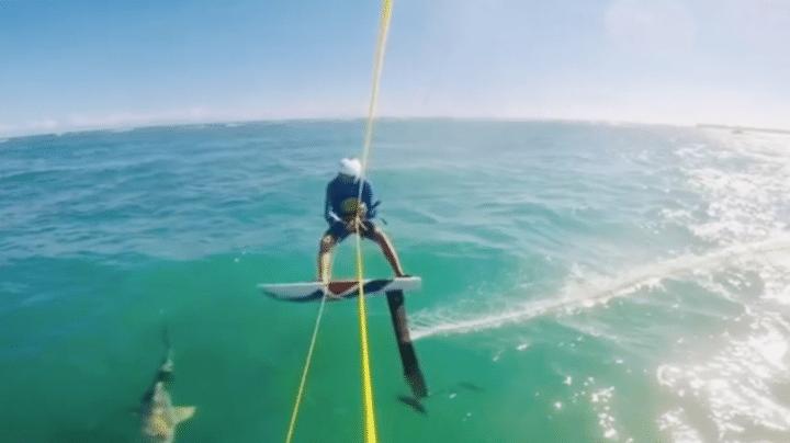 requin kitesurf