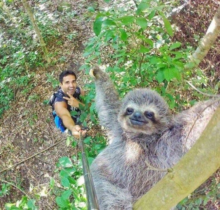 pro du selfie