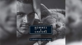 thumb hommes chatons
