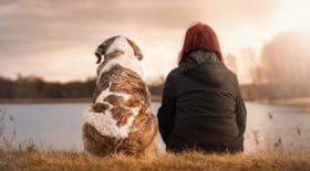 chien-court-métrage-si-pouvez-parler-larmes