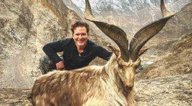 La somme colossale que doit payer un chasseur après avoir tué une chèvre sacrée