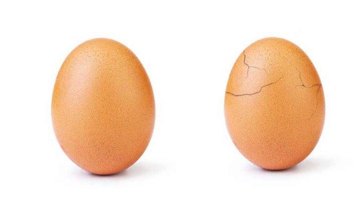 éclosion œuf le plus liké instagram