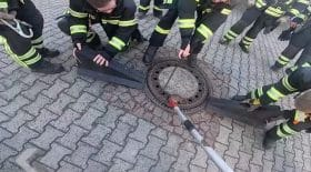 Rat Pompiers