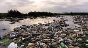 Pollution plastique