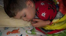 garçon dort faire des câlins poisson rouge
