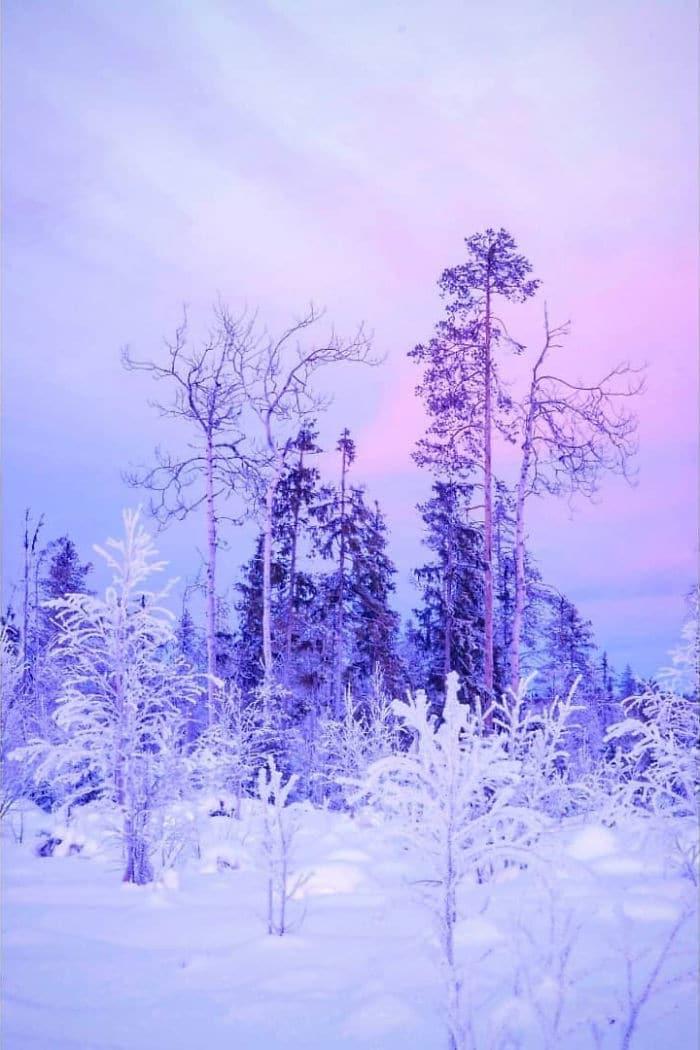 photos hiver