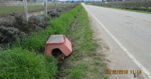 Il découvre une niche abandonnée sur le bord de la route