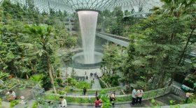 meilleur aéroport changi singapour