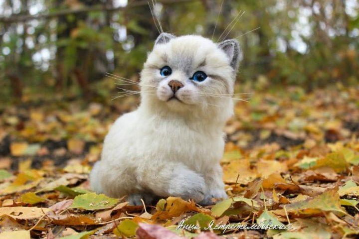 chat-jouet3