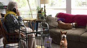grand-mère mise en cage