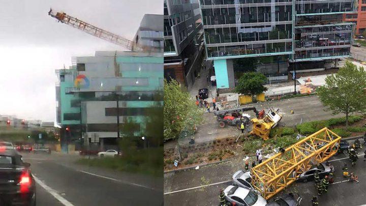 grue s'effondre campus google morts