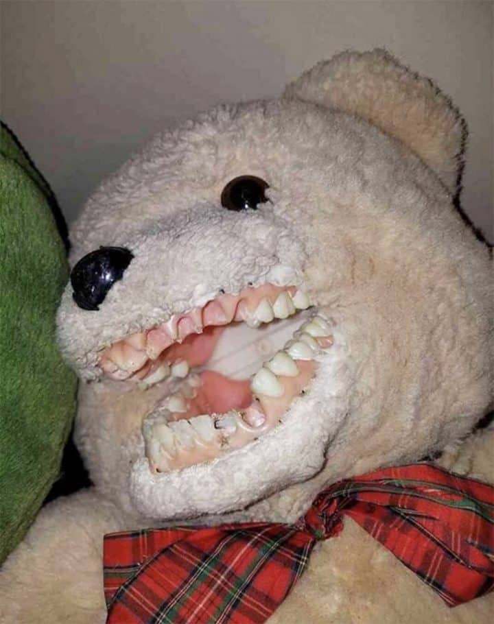 dentiste-peluche 5