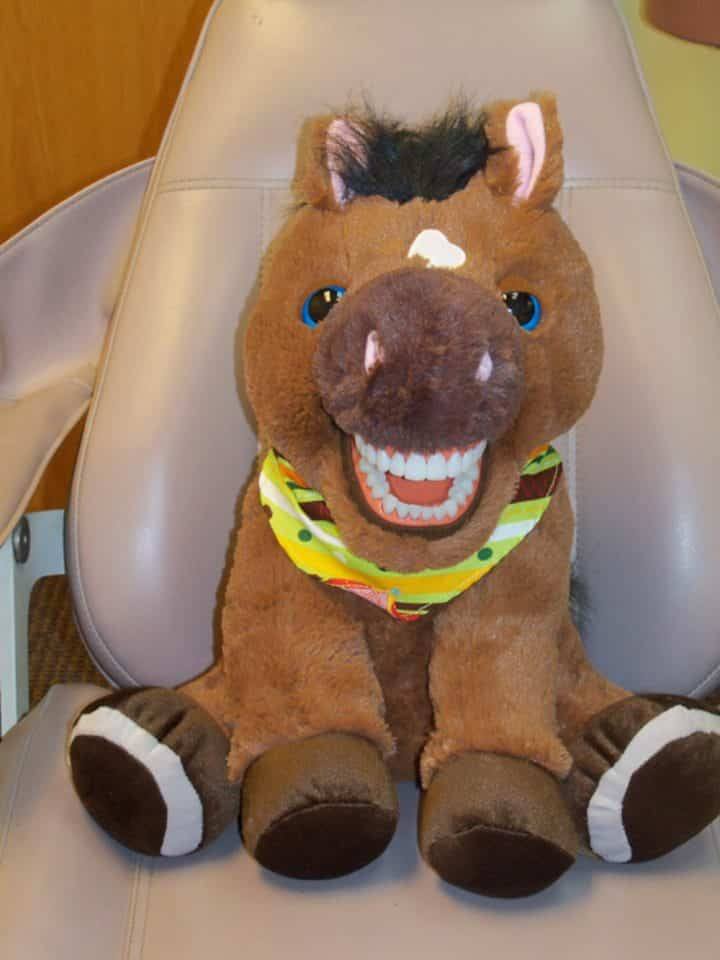 dentiste-peluche 3