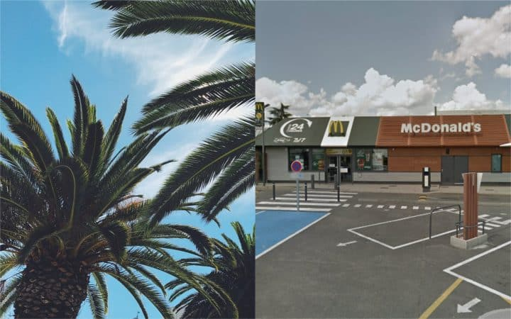 palmiers mcdo