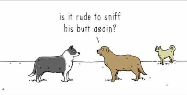 Il réalise des dessins à la fois drôles et mignons en faisant discuter des animaux