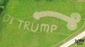 Penis Donald Trump