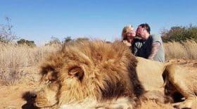 ils-abattent-un-lion-et-posent-pour-une-photo-souvenir-avec-un-tendre-baiser