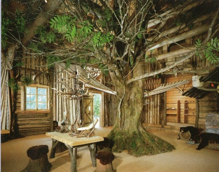 arbre maison