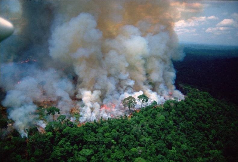 #PrayForAmazonia : de violents incendies ravagent le poumon de la Terre depuis plusieurs semaines