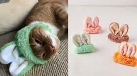 bonnet oreilles de lapin