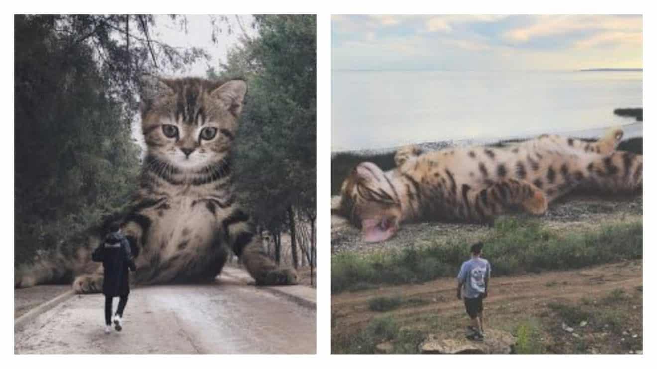 Cet artiste russe imagine à quoi ressemblerait le monde si les chats étaient géants!