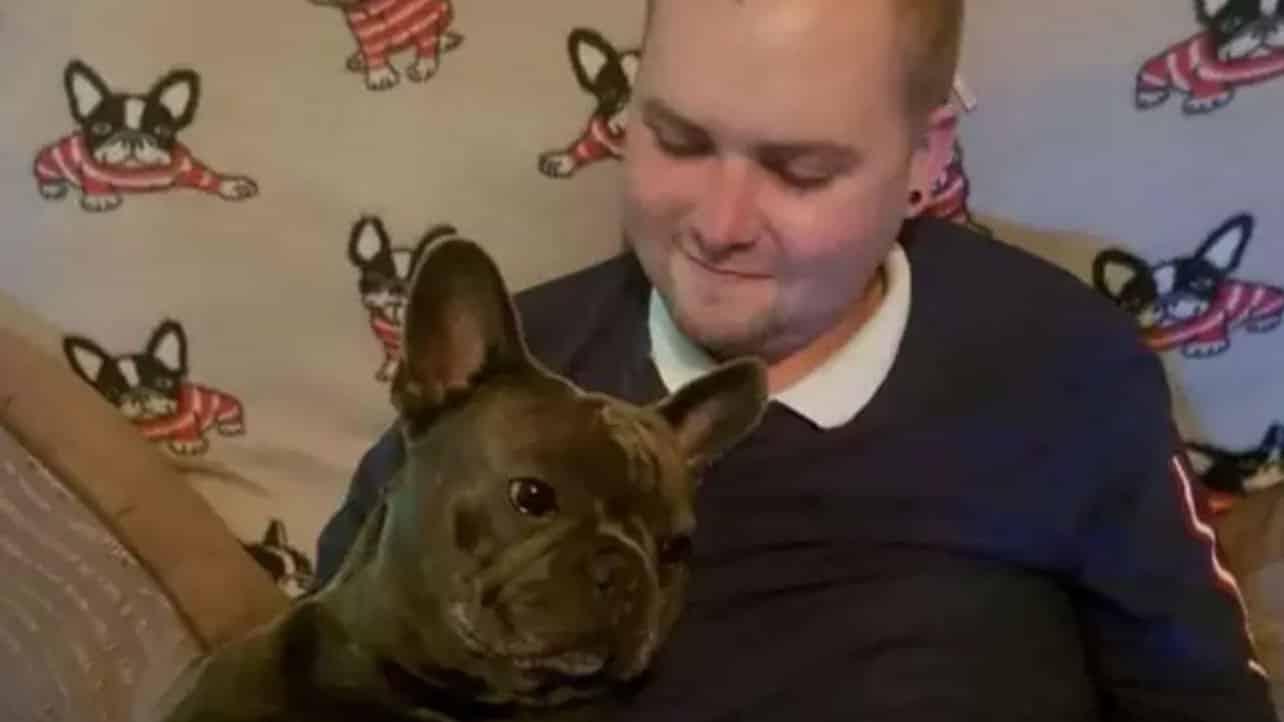 Un bulldog malheureux meurt 15 minutes après son maitre, décédé d'un cancer