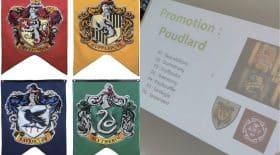 Harry Potter lycée